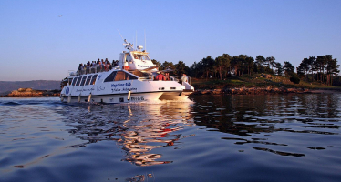 One day Tour to Rías Baixas with boat trip